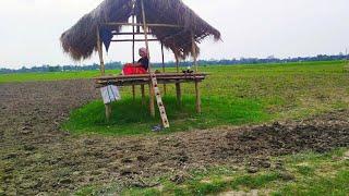Mur gaan houk.... Mousumi Doley || Assamese song