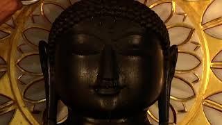 Jin Abhishek,Swasti Dham,Jahazpur,Rajasthan | जिन अभिषेक, स्वस्ति धाम | Date:-26/10/20