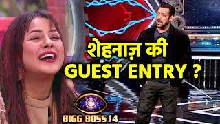 Bigg Boss 14: Shehnaaz Gill Ki Hogi Entry, Special Task Hoga | Social Media Par Afwa
