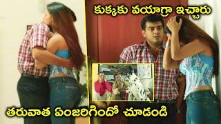 తరువాత ఏంజరిగిందో చూడండి | Dharma Yuddham Movie Scenes | Ajith Kumar | Pooja
