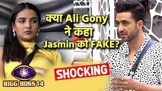 Bigg Boss 14: Aly Goni Calls Jasmin FAKE?, Nikki Ke Sath Baton Ho Baton Me Kya Bole Aly