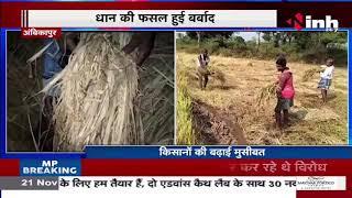 Chhattisgarh News || Chhattisgarh में बेमौसम बारिश