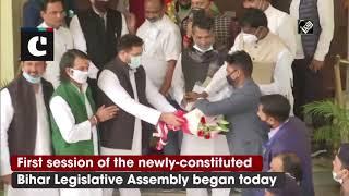 Tejashwi, Tej Pratap Yadav Arrive At Bihar Legislative Assembly To Attend 1st Session | Catch News