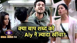 Bigg Boss 14: Kya BAAP Shabd Ko Aly Goni Ne Jyada Khicha? Social Media Par Kya Chal Rahi Hai Baate