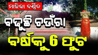 The Area Chaunra is Increasing | Found Proof in Malika | Satya Bhanja
