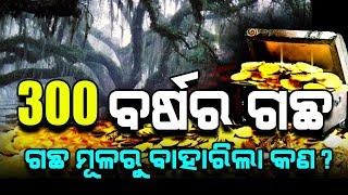 More Than 300 Years Old Tree | Found Secret Treasure | Satya Bhanja