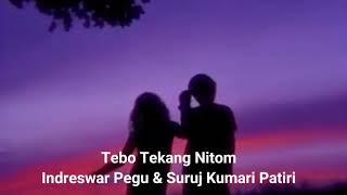 Mising Folk song Tebo Tekang || Indreswar Pegu