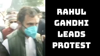 Rahul Gandhi Leads Protest March To Rashtrapati Bhavan Over Farmers' Protest | Catch News