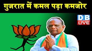 Gujarat में कमल पड़ा कमजोर | BJP सांसद Mansukh Vasava ने छोड़ी BJP |#DBLIVE