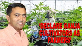 'CM now declare Ganja cultivators as 'Farmers', give them Krishi Cards'
