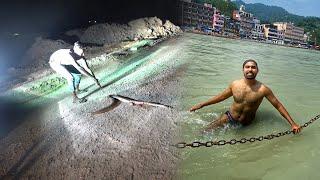 Wild animals on Haridwar Roads During Lockdown ????