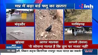 Madhya Pradesh News || Madhya Pradesh में बढ़ा Bird flu का खतरा
