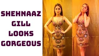 Shehnaaz Gill Looks Gorgeous In This Video | Catch News