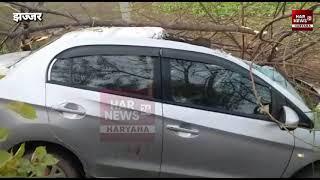 झज्जर में तेज रफ्तार हौंडा सिटी अमेज पेड़ से टकराई कार की छत के परखच्चे उड़े। एक व्यक्ति घायल।