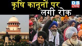 कृषि कानूनों पर लगी रोक | Farmers Protest | Supreme Court Kisan Andolan | Kisan Union | #DBLIVE