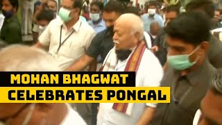 RSS Chief Mohan Bhagwat Celebrates Pongal In Chennai | Catch News