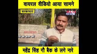सरकाघाट : सोशल मीडिया पर वायरल वीडियो आया सामने, महेंद्र सिंह गौ बैक के लगे नारे