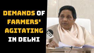 Mayawati Urges Centre To Accept Demands Of Farmers' Agitating In Delhi | Catch News