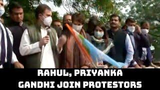 Kisan Adhikar Divas: Rahul, Priyanka Gandhi Join Protestors To Lead March Towards Delhi's Guv House