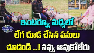 Baby Cow Fun While Making an Interview | Ex MP Harsha kumar | Bloopers | Ap News | Top Telugu TV