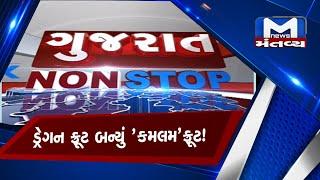 Gujarat non stop (19/01/2021)