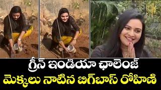 Actress Rohini Accepted Green India Challenge | Bigg Boss Rohini Noni | Top Telugu TV