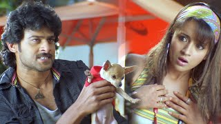 Rudran Malayalam Movie Scenes | Prabhas & Trisha Fight for Dog