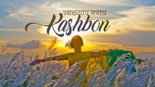 ঢাকার আফতাব নগরে কাশবন | Kashbon In Dhaka | Travel Vlog Dhaka