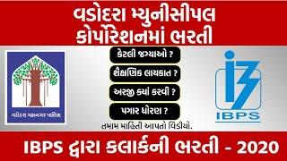 job in vadodara|job in ibps clerk|govt job in gujarat