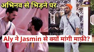 Shocking Abhinav Ke Sath Bhidne Par, Aly Goni Ne Mangi Jasmin Se Maafi, Kyon? Bigg Boss 14 Live Feed