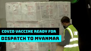 COVID Vaccine Ready For Dispatch To Myanmar, Seychelles, Mauritius From Mumbai Airport | Catch News