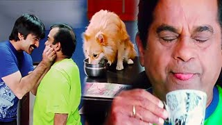 Ravi Teja and Brahmanandam Funny Dog Comedy Scene _ South Hindi Dubbed Movies Scenes 2020_UAV MOVIES