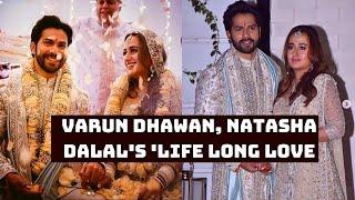 Varun Dhawan, Natasha Dalal's 'Life Long Love Became Official' | Catch News