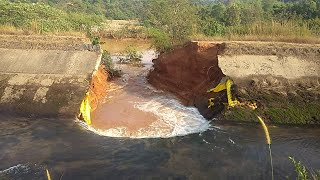 WATCH | Tillari canal bursts bank again at Sateli in Dodamarg fear of flooding in the area