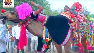 Bhanwar Khatana का धमाकेदार रसिया || छज्जे ऊपर बोयो री यबाजरो Dj || Latest Rajasthani Dj Song 2021