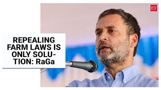 Repealing new farm laws and putting them in waste paper basket only solution: Rahul Gandhi