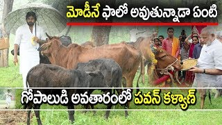 janasena pawan kalyan simplicity I Feeding cows I PSPK I Pawan Kalyan Speech I Rectv India