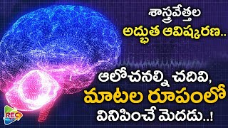 Unknown Facts About The Human Brain I Unknown Facts In Telugu I RECTV INFO