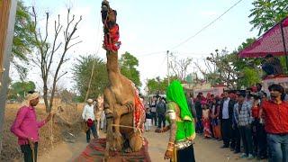 Superhit Dj Rasiya SOng | बचाइले मेरी सासुलिया | Latest Rajasthani Song 2021 | Maina