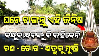 Keep This wonderful Thing at Your Home to get all in Solution | Satya Bhanja
