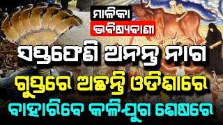 7 Face Cobra is in Odisha | End of KaliYug | Place in Malika | Satya Bhanja