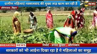 ग्रामीण महिलाएं नक्सलवाद की मुख्य जड़ खत्म कर रही है | Rural women ending the main root of Naxalism