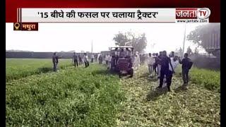 UP: मथुरा में किसान ने 15 बीघे की खड़ी फसल पर चलाया ट्रैक्टर, कहा- हमारी बात नहीं सुन रही है सरकार