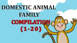 Finger Family DOMESTIC ANIMAL Songs For Children | Daddy Finger Cartoon Animation Nursery Rhymes
