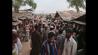 155 illegal Rohingya immigrants held in Jammu and Kashmir as govt begins verification process