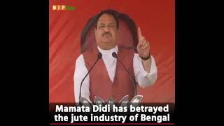 Out of 60 jute mills in Hooghly, 39 mills have been shut down under Mamata di's rule: Shri JP Nadda