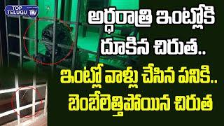 అర్ధరాత్రి ఇంట్లోకి దూకిన చిరుత ..  ఇంటి ఓనర్ చేసిన పనికి బెంబేలేత్తిపోయిన  చిరుత | Top Telugu TV
