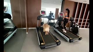 Wow! व्यायाम करें स्वस्थ रहें