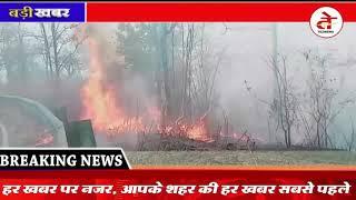 Madhya Pradesh News : जंगल में लग रही आग साजिश या हादसा, 200 कर्मचारियों के सामने रोटी रोजी का संकट