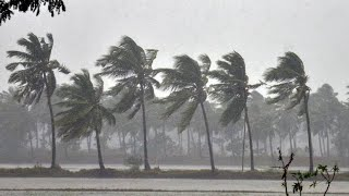 Rain | Heavy rain witnessed in Keri-Sattari